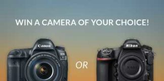 Canon 5D Mark IV or Nikon D850 Camera