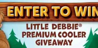 Camp Little Debbie Instant Win Game