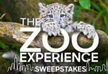 the zoo giveaway